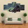 Unidentified mahout tames and plays with his elephant raising its trunk. Multi Panel Canvas Wall Art