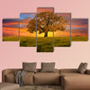 Alone tree in the field with clouds multi panel canvas wall art