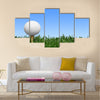 Golf, Grass, Golf Ball Multi Panel Canvas Wall Art