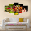 Vegetable, Food, Healthy Eating Multi panel canvas wall art