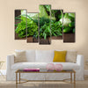 Useful green vegetables on a wooden background Multi panel canvas wall art