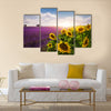 Lavender and sunflowers fields , Provence Multi Panel Canvas Wall Art