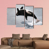 Killer whale jumping out of the water multi panel canvas wall art