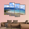 Road along Lake Wakatipu, Queenstown, New Zealand canvas wall art