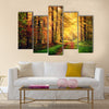 Autumn forest scenery with rays of warm light Multi panel canvas wall art