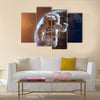 NASA's astronaut in open space Multi Panel Canvas Wall Art