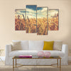 Sunny wheat field Multi panel canvas wall art