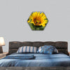 Monarch and a bee on a sunflower hexagonal canvas wall art