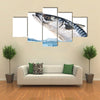 Fresh Mackerel Fish Jumping out of the Water. Multi Panel Canvas Wall Art