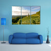 Landscape with wine grapes in the vineyard before harvest, Styria wall art