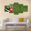 A red leather cricket ball lying in green grass Multi panel canvas Wall art