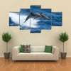 Wild nature background - two jumping dolphins in stormy sea Multi Panel Canvas Wall Art