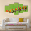 Nine of Sun Conure Parrot bird perching on a branch on green background Multi panel canvas wall art
