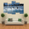 Gentoo Penguin Playtime At Your Local Iceberg, Antarctica Multi Panel Canvas Wall Art