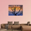 Silhouette of lonely tree growing in a pond at sunrise wall art