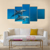 Wild dolphins underwater multi panel canvas wall art