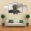 Tungurahua Volcano, Intense Strombolian Activity, Ecuador multi panel canvas wall art
