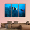 Young woman scuba diver exploring sea bottom. Underwater life with beautiful wall art