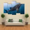 Whale Shark Very Near Looking at you Underwater in Papua Multi Panel Canvas Wall Art