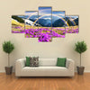 Ukraine wild Montenegrin Mountains on the background of alpine sheep Multi panel canvas wall art