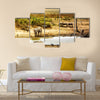 Dreamy scene of common South African safari wildlife animals together at sunset Multi panel canvas wall art