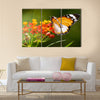 Colorful Butterfly Multi Panel Canvas Wall Art