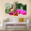 Butterfly (Papilio Machaon) sitting on flower (zinnia) Multi Panel Canvas Wall Art
