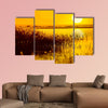 Reed stalks in the swamp against sunlight Multi panel canvas wall art