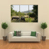 White Rhino in the Krueger National Park Multi panel canvas wall art