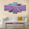 Lavender field in Banstead Surrey Multi panel canvas wall art