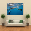 Whale Shark And Divers Multi Panel Canvas Wall Art