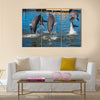 Three Dolphins are jumping and swimming in a pool multi panel canvas wall art