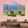 A family of Canadian Geese by the water Multi panel canvas wall art