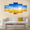 Golden wheat field with blue sky in background Multi panel canvas wall art