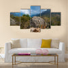 Wild nature of the Socotra Island, Yemen Multi panel canvas wall art