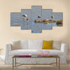 Flamingo in Lady's Mile Limassol Multi panel canvas wall art