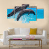 Two dolphins jump out of the pool water during the performance multi panel canvas wall art