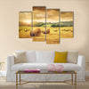 Field of freshly cut bales of hay with beautiful sunset Multi panel canvas wall art