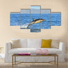 Dolphin, swimming in the ocean and hunting for fish multi panel canvas wall art