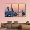 Dalmatian Pelicans (Pelecanus crispus) on Water multi panel canvas wall art