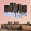 Siberian Husky walks in the winter forest Multi panel canvas wall art