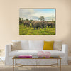 African elephants with baby on the masai mara kenya Africa Multi Panel Canvas Wall art