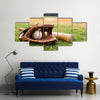 Old baseball, glove, and bat on field with base Multi Panel Canvas Wall Art
