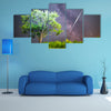 An Ethereal View Of Meteor Shower In The Lush Grass Land Multi Panel Canvas Wall Art