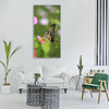 flowers butterfly insects nature Vertical Canvas Wall Art