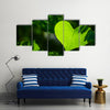 The Green Love Multi Panel Canvas Wall Art Set