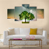 Lonely Tree Under The Shining Stars Of Milky Way In Romania Multi Panel Canvas Wall Art