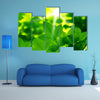 A Beautiful View Go Green Multi Panel Canvas Wall Art Set