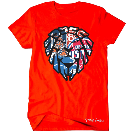 DETROIT TEAMS RED TEE