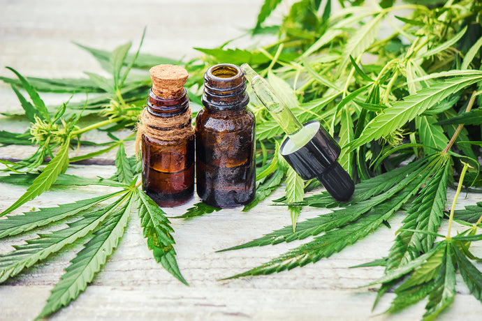 Hemp Oil v CBD Oil : What's the difference?